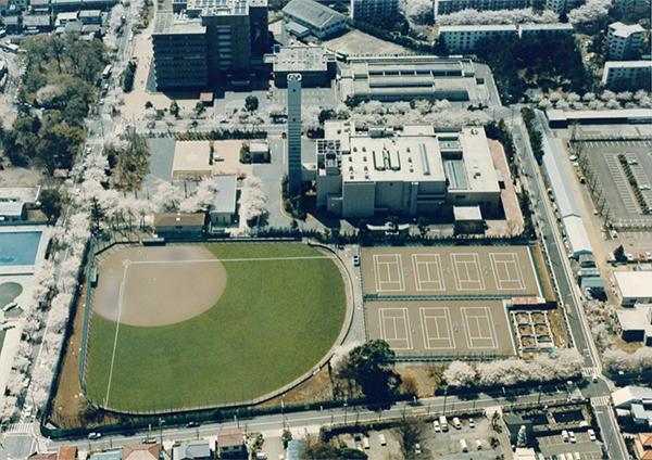 武蔵野市営野球場